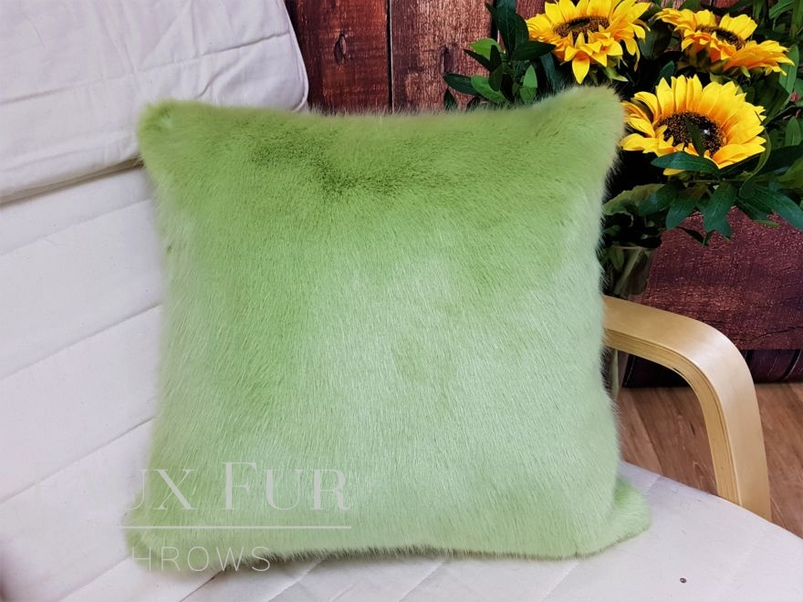 Spring Willow Cushion